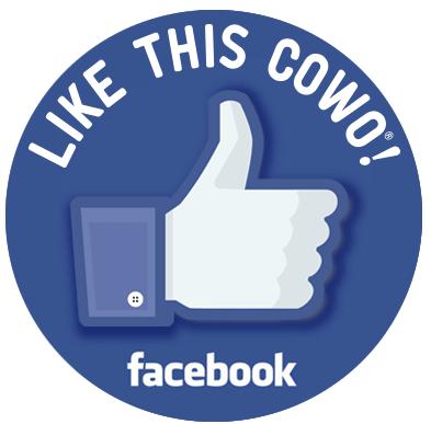 Facebook Castellanza Varese Coworking